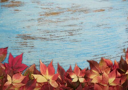 Autumn leaves on blue wooden background with copy space