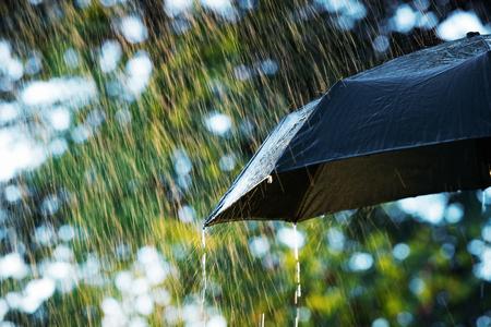 Deszcz, zamknąć z parasolem w deszczu z kopi?