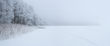 frozen lake: Frozen empty lake during the winter with copy space