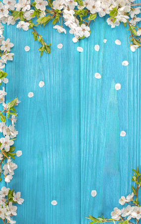 Spring background, frame of white blossom on old wooden board with copy space Archivio Fotografico