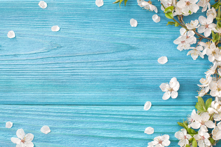 Spring background, frame of white blossom on old wooden board with copy space Lizenzfreie Bilder