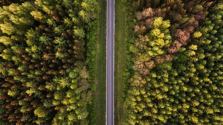 High angle view of a road in the forest with copy space Standard-Bild