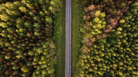 Hohe Winkelsicht einer Straße im Wald mit Kopienraum