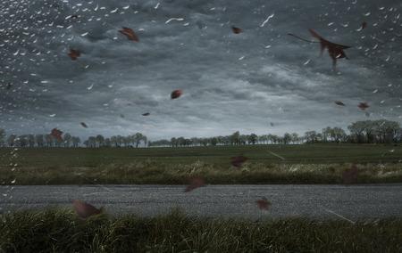 Leere Herbst stürmischen Hintergrund mit Kopie Raum
