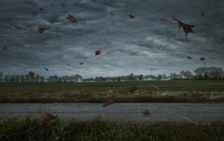 Leere autum stürmischen Hintergrund mit Kopie Raum Lizenzfreie Bilder
