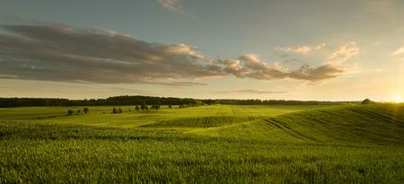 Panoramablick auf leere masurian Feld bei Sonnenuntergang mit Kopie Raum