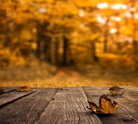 Herbsthintergrund, leerer Holztisch über defocused Wald mit Kopienraum