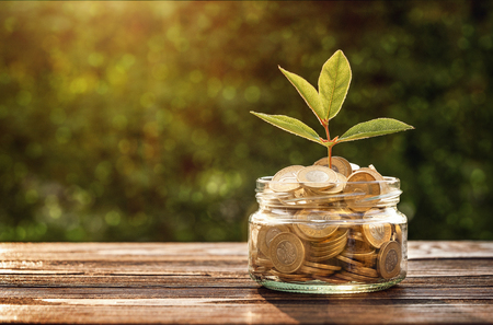 Small plant growing out from jar of saving coins with copy space