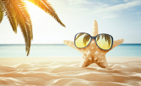Summer background. Happy starfish enjoy the sun at the empty tropical beach with copy space