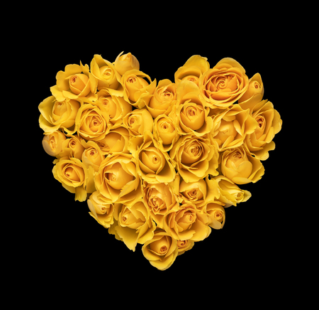 Heart shape made of yellow roses isolated on black background