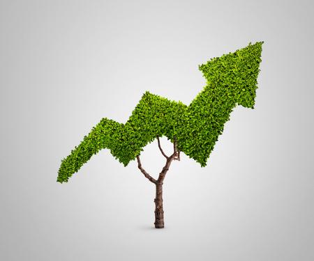Pflanze wächst in Form eines Pfeils isoliert auf grauem Hintergrund