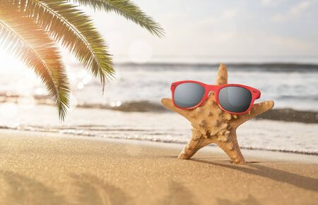 Summer holidays concept, Happy starfish enjoy the sun at the tropical beach with copy space