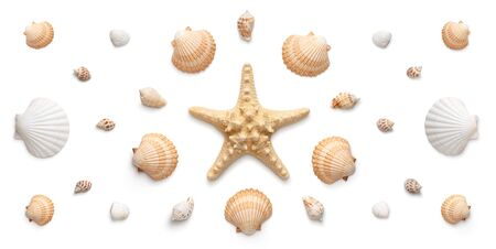 High angle, panoramic view of starfish and seashells isolated on white background  Stock fotó
