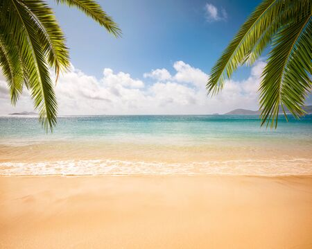 Empty tropical beach background with copy space