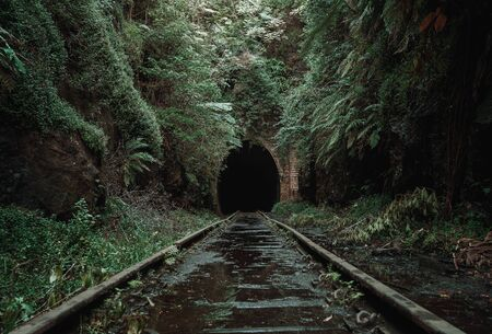 Old, abandoned railway tunnel in the middle of tropical forest