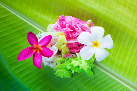 Coconut candy sweet colorful appetizing.