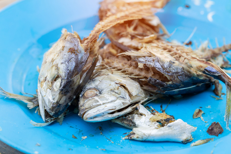 Mackerel heads that do not have meat and are food waste