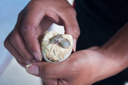 speciality: Balut -  philippine speciality