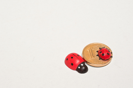 two figures of Ladybirds and one 1-Eurocent-piece, isolated photo