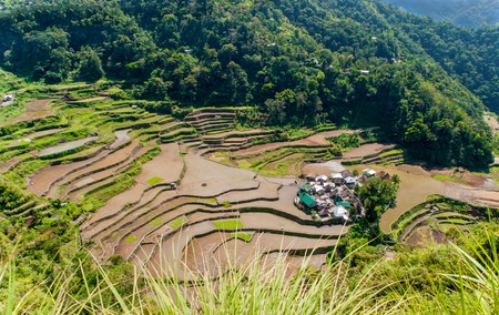 overlooking the rice-terraces and village of Banga-An, Luzon, Philippines photo