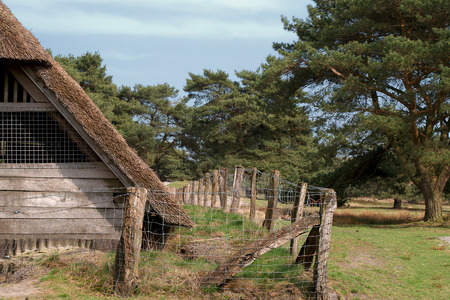 sandy soil: Part of an old cottage in the heather- and moorland of Northern Germany Stock Photo