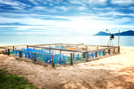 Protection and surveillance enclosure for sea turtle eggs on a beach on Borneo, Sarawak, Malaysia
