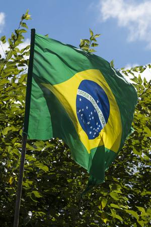 Flag of Brazil in the weak wind Standard-Bild - 96146588