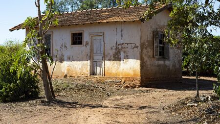 Rural farm in the world, small house, coffee plantation and big tree. Stockfoto