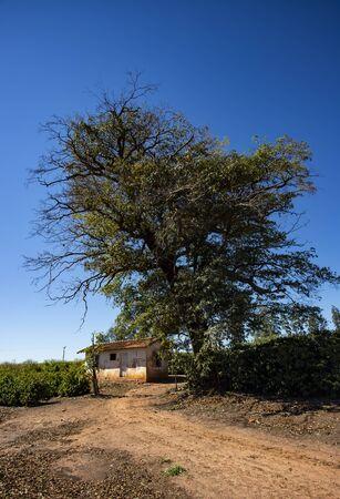 Rural farm in the world.