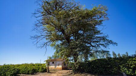 Rural country farmhouse in Brazil