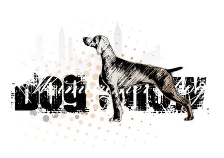animals hunting: dog show 1