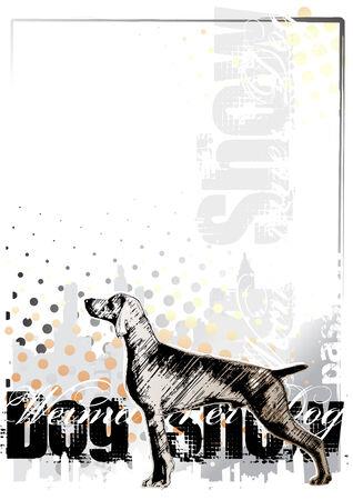 pointer dog: dog show background 1