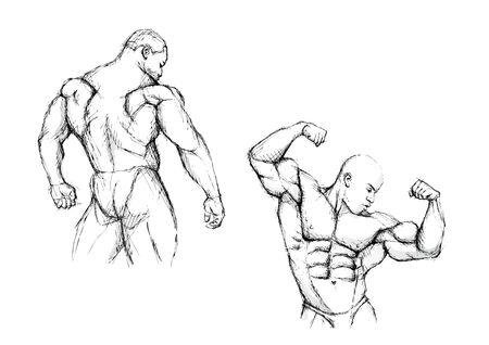 weightlifting: bodybuilding duo Illustration