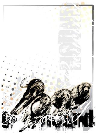 greyhound: greyhound background 1
