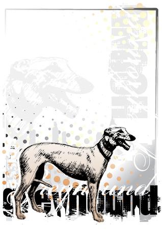 greyhound background Vector