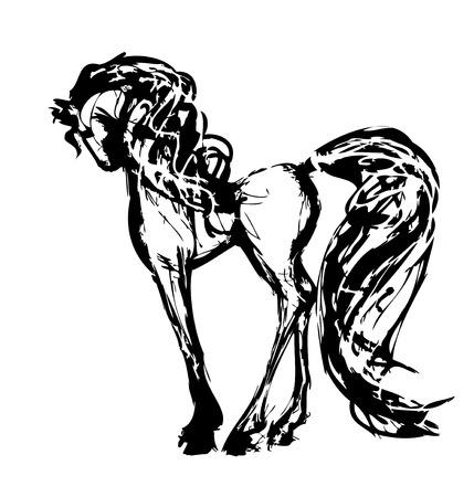 horse saddle: cavallo