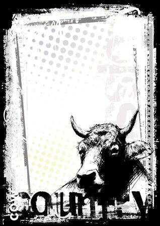 cow on the poster background Vector