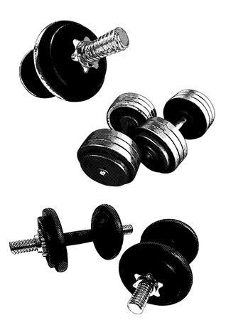 dumbell: attrezzature di bodybuilding