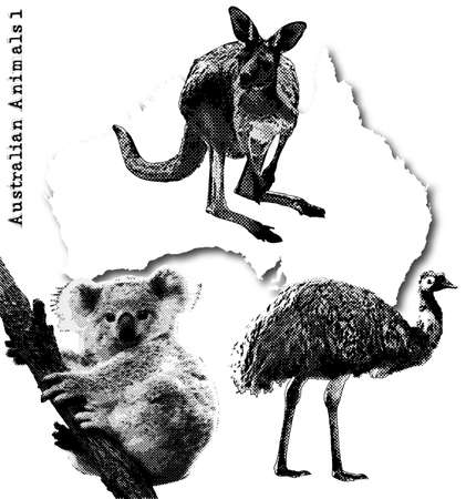 �meu: animaux australiens Illustration
