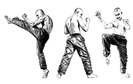 martial art: fighters trio