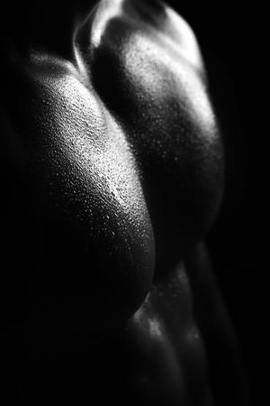 Attractive male torso closeup