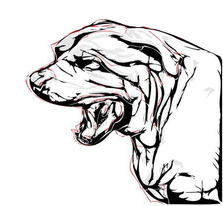 bull mastiff: aggressive dog illustration on white background Illustration