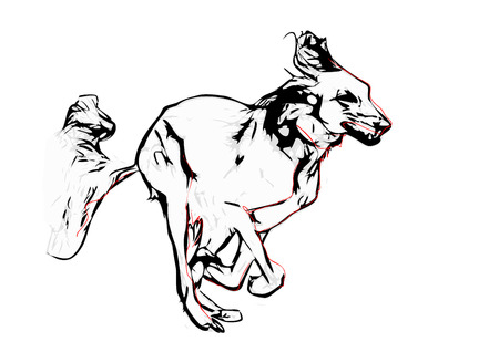 backgraound: running saluki illustration on white backgraound