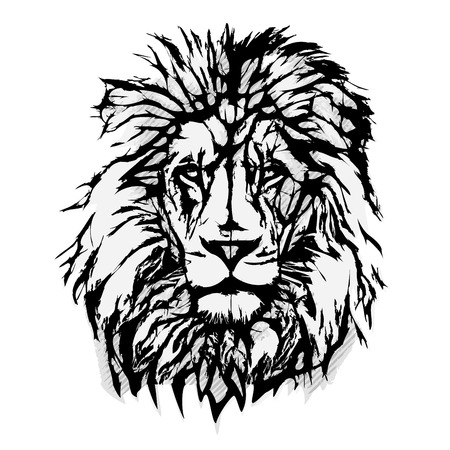 Lion Head vector illustration Çizim