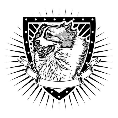 australian shepherd: australian shepherd on the shield