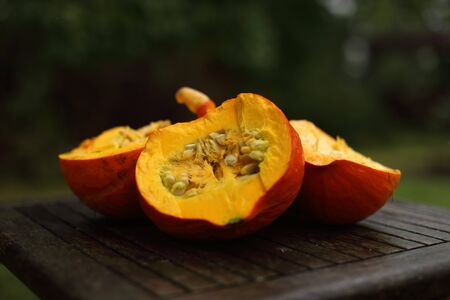 Closeup of fresh red hokkaido pumpkins, autumn, late summer 版權商用圖片