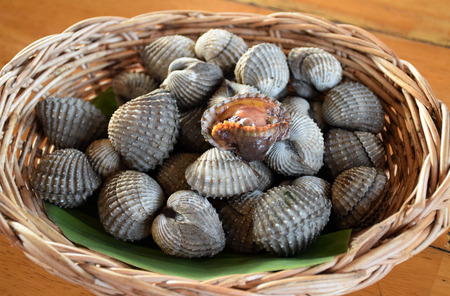 cockles: Fresh cockles casually placed on a wicker basket Stock Photo