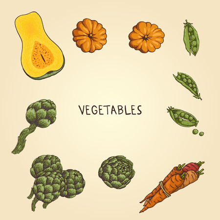 Set of the hand-drawn vegetables: pumpkin, green peas, carrot, artichoke.