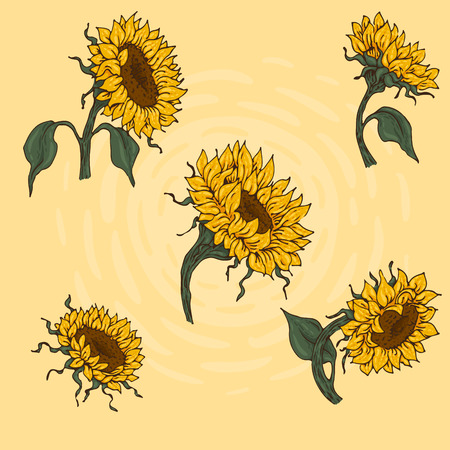 Set of hand-drawn sunflowers