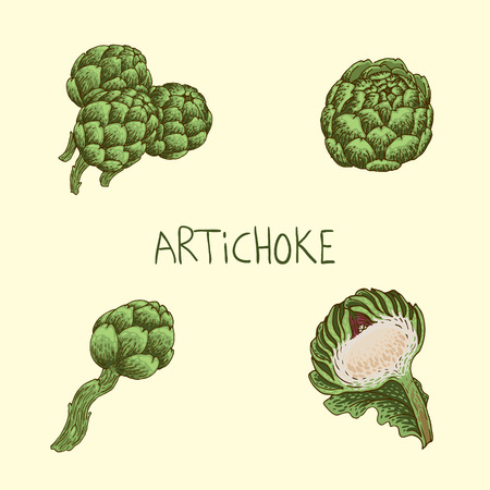 Set of hand-drawn artichoke Illustration